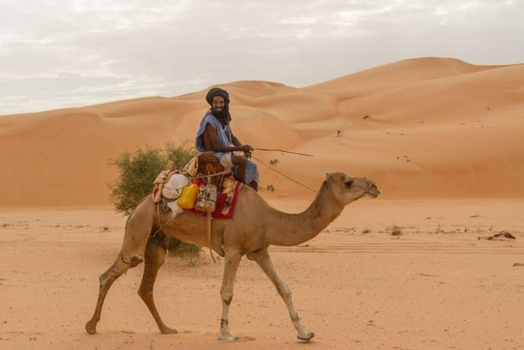 Mauritania Freedom of Press