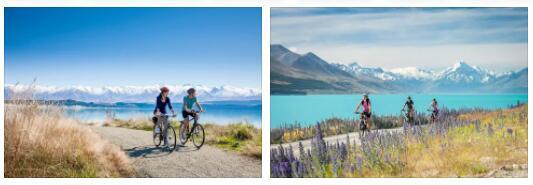 New Zealand Everyday Life