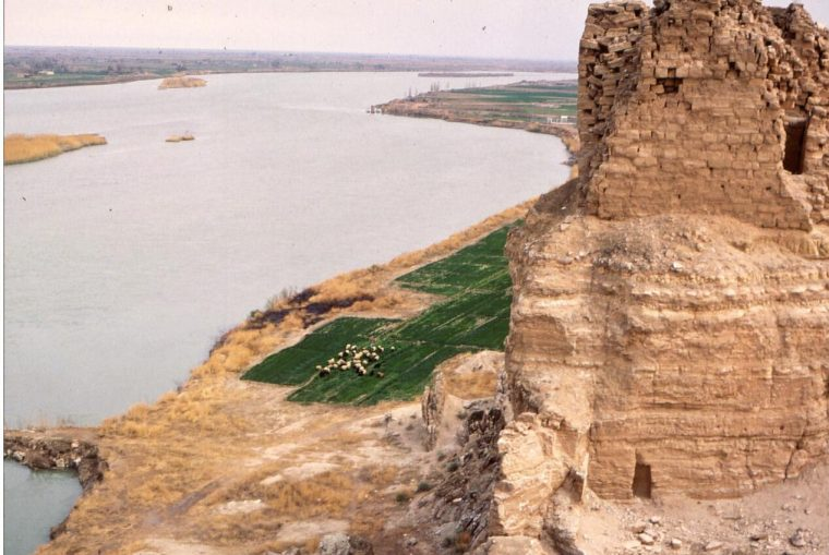 Syria Agriculture on the Euphrates
