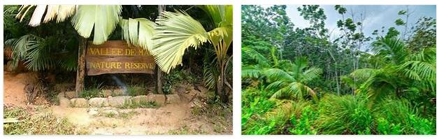 Mai Valley Nature Park (World Heritage)
