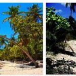 Traveling in Guadeloupe